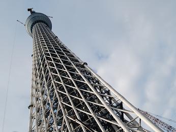 11 0228sky-tower.jpg
