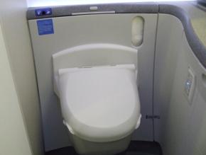 1102-toilet1.JPG