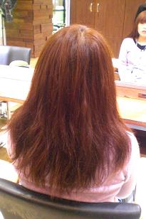 20100325_saronz01.JPG