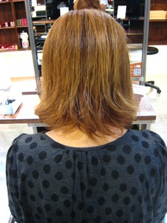 100930salons1.JPG