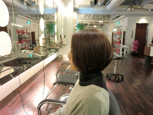 101125salons.JPG