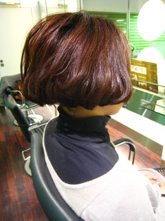 101125salons2.JPG